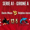 Sharks Monza A1 vs Dolphins Ancona 12-5