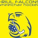 friul_falcons