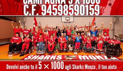 Dona il tuo 5×1000 agli Sharks!